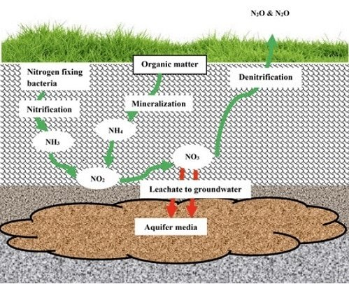 nitrates and nitrites removal method from groundwater