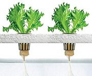 4 Stage - Hydroponic Reverse Osmosis Water Filter for plants growth