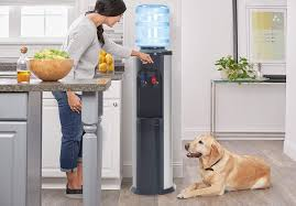 Clover B14A Bottled Water Dispenser used in home